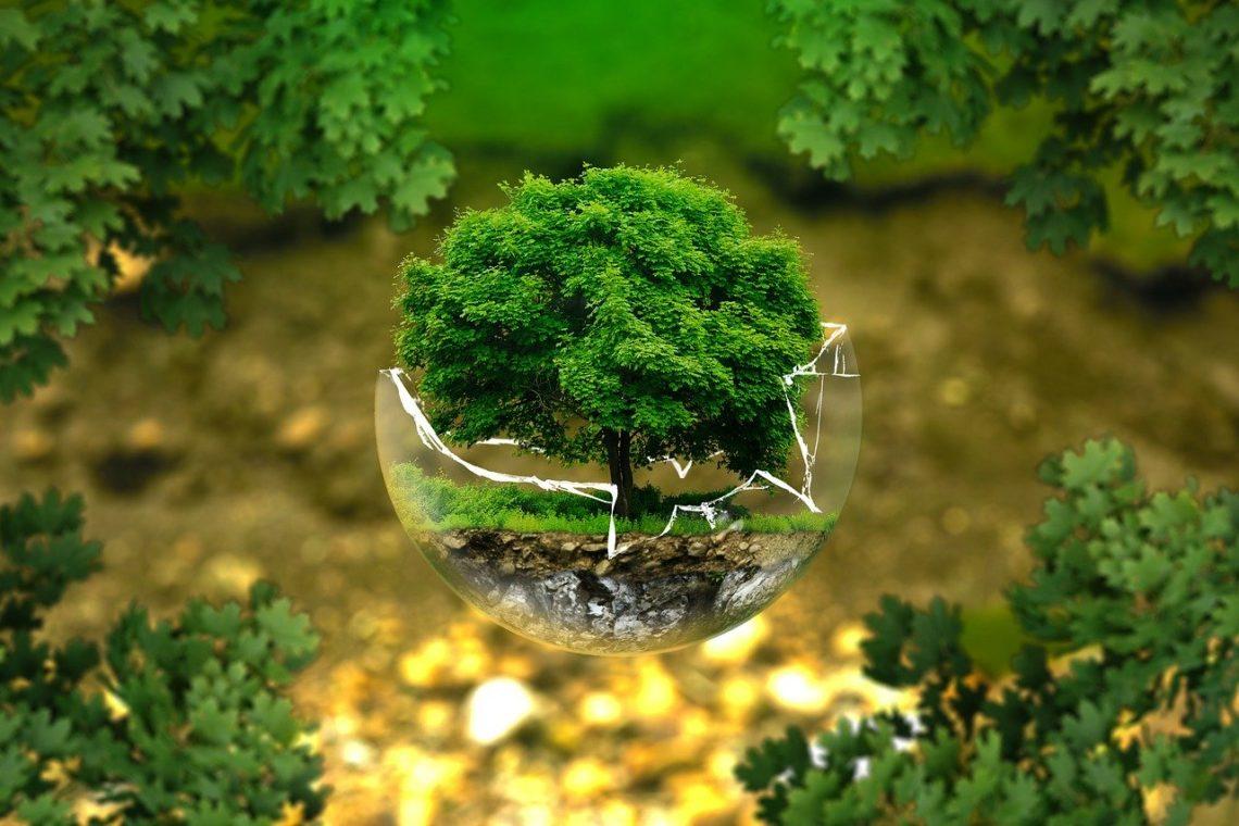 passion écologie