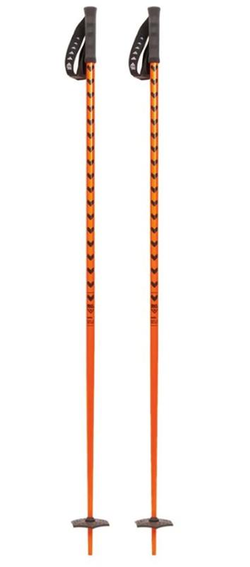 ski et bâtons